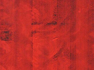 """Renato Meneghetti, Studio per Rx arcata dentaria frontale serrata """"Ritratto di paracelso"""", 1997"""